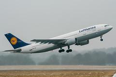D-AIAI (PlanePixNase) Tags: aircraft airport planespotting haj eddv hannover langenhagen lufthansa airbus 300 a300 a300600 ab6