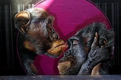 Marque de tendresse - The kiss - Beijinho na testa (Edgard.V) Tags: paris parigi streetart arte urbano urban callejero mural singe chimpanzé monkey macaco scimmia love amor carinho tenerezza tenderness baiser baccio beijo miss kiss