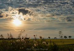 Sunset and clouds (roland.schuhmann) Tags: sky sun sunset sonnenuntergang sonne nature nikon natur nikond750 voigtländer voigtlandernokton5814slll view cloud clouds colorful wolken thuringia thüringen jena landscape landschaft light panorama spring fernblick d750 abend outdoors color