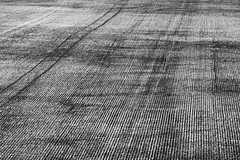 Farmlines, Yorke Peninsula, South Australia (Red Nomad OZ) Tags: yorkepeninsula southaustralia australia outdoor outside landscape line rural country countryside field abstract monochrome