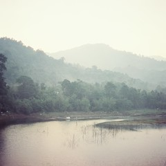 River (bdrc) Tags: agfa isolette agnar 85mm f45 manual analogue legacy relic antique prime old asdgraphy malaysia malaysianphotographer film cinestill 50d colour negative color river hill mountain forest trees plant nature outdoor kuala kubu baru morning 6x6 classic
