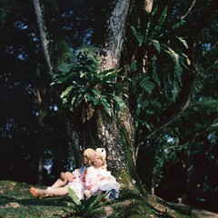 Kagamine (bdrc) Tags: agfa isolette agnar 85mm f45 manual analogue legacy relic antique prime old asdgraphy malaysia malaysianphotographer film cinestill 50d colour negative color kagamine rin len cosplay forest outdoor tree plant park 6x6 classic