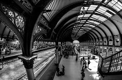 York Train Station (Derwisz) Tags: yorkshire york trainstation railwaystation railway architecture arch fisheyelens northyorkshire canoneos40d england unitedkingdom uk blackwhite blackandwhite monochrome perspective