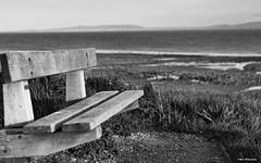Across the Bristol Channel from Llantwit Major Beach (akatsoulis) Tags: southwales valeofglamorgan waterscape bristolchannel wales walshflickcymru llantwitmajorbeach nikon nikonuk nikoneurope nikkor landscape exploring nature bench apsc 50mm blackandwhitephotography