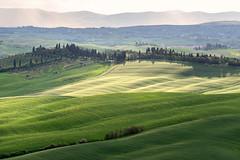 Crete Senesi Freshness (Dani℮l) Tags: tuscany toscana toscane crete senesi italy siena landscape rolling hills light shadow rain daniel bosma