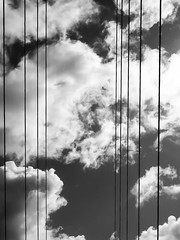 clouds and cables (anjahieckmann) Tags: olympus blackandwhite bnw hamburg cables clouds nature