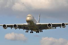'EY57X' (EY0017) AUH-LHR (A380spotter) Tags: approach landing arrival finals shortfinals belly airbus a380 800 msn0198 a6apg fromabudhabitotheworld facetsofabudhabi landorassociates 2014 livery colours scheme الإتحاد etihad etihadairways etd ey ey57x ey0017 auhlhr runway27r 27r london heathrow egll lhr