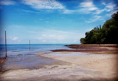 Negeri Sembilan https://maps.app.goo.gl/uF7nCcBe5gYG15bd6  Kampung Bahasa Kapor, 71000 Port Dickson, Negeri Sembilan https://maps.app.goo.gl/dqrXs57j93ZaB1ad7  https://weibo.com/u/7153185540  https://foursquare.com/soonlung81  https://maps.app.goo.gl/CPWs (soonlung81) Tags: semester reizen 여행 ชายหาด viaggio malaysia vakantie asian holiday 馬來西亞 การเดินทาง 휴일 trip fiesta vacances سفر strand 亞洲 пляж путешествие 海滩 spiaggia ビーチ 바닷가 度假 旅行 voyage عطلة portdickson праздник playa vacanza วันหยุด asia pantai ホリデー beach viaje plage reise urlaub