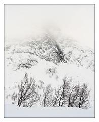 Senja Norway (shaunyoung365) Tags: senja norway winter mountain trees travel snow sonya7riii
