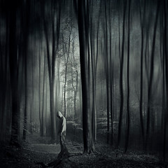 gridlock (Dyrk.Wyst) Tags: beech trees foliage forest green leaves light mist mood nature solitude square surreal texture peaceful photo illustration photomanipulation mystical manipulation fine art experimental disturbing conceptual composite atmosphere angst abstract