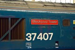37407 0Z38 Preston (2) (British Rail 1980s and 1990s) Tags: train rail railway loco locomotive lmr londonmidlandregion mainline wcml westcoastmainline lancs lancashire livery preston liveried traction station ee englishelectric type3 br britishrail growler tractor diesel 37 class37 blue largelogo blackpooltower nameplate 0z38 drs directrailservices 37407 railroad