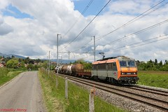 SNCF BB 26217 (Bradley Morey) Tags: sncf bb 26000 26217 sybic alstom sbb cff ffs cargo 45506 genève la praille sibelin satigny trainspotting train photography photo