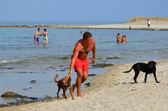 Best days at the beach are shared with a best friend (Valantis Antoniades) Tags: dog dogs summer sea beach people greece halkidiki chalkidiki afytos macedoniagreece makedonia macedoniatimeless macedonian macédoine mazedonien μακεδονια македонијамакедонскимакедонци