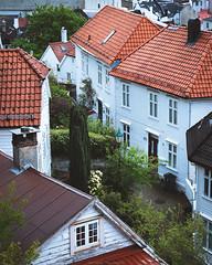 Houses of Bergen (Steinskog) Tags: bergen gfx50r norway gf3264mm