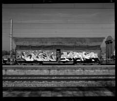 Scan 83 (Champy88) Tags: mamiyarb67pros mamiyakl3590l mamiya scanviewscanmate5000 scanmate5000 escanerdetambor drumscanner ilfordfp4plus ilford fp4 mediumformat formatomedio spurhrx spur 6x7 67 rb67 blackandwhite idealformat analog abandoned film filmphotography filmisnotdead negative bn blancoynegro noiretblanc