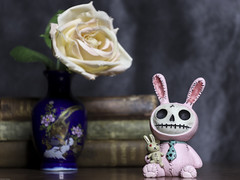 Furry Bones figurine and Vase with Flower (DayBreak.Images) Tags: tabletop stilllife vintage antique books vase flower furrybones resin rabbitfigure canondslr meyeroptic 50mm trioplan ringlight lightroom home