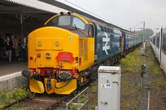 37409 at Kings Lynn 18/05/19 (chrisrowe37419) Tags: 37409 kingslynn 180519