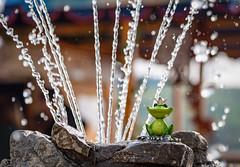 The Frog King - Froschkönig (Stefan Skalla) Tags: harz wernigerode frogking froschkönig brunnen fountain water wasser skulptur fairytail märchen deutschland germany