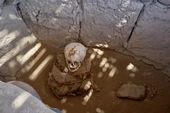 Chauchilla Cemetery - Goosebumps Inclusive (W_von_S) Tags: chauchilla cemetery friedhof peru nazca mumie mummy knochen bones archäologie archaeology bestattung funeral baumwolle harz leiche cotton resin southamerica südamerika wvons werner sony sonyilce7rm2 schädel skull mensch human wüste desert grab grave