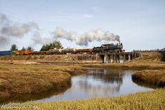 PLC 2 @ Wheeler, OR (Michael Polk) Tags: oregon coast scenic railroad freight train steam locomotive wheeler tidal marsh bridge 835 trestle plc 2 polson logging company