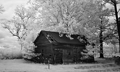 On The Edge (IR) (F. Neil S.) Tags: easternnorthcarolina derelict farmhouse fullspectrumconversion hoya r72 filter 720nm monochrome blackandwhite blancetnoir sony nex6 emount