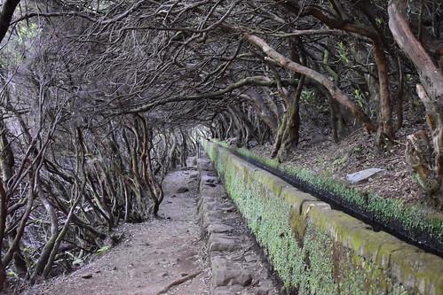 Madeira, levada walk to 25 fountains