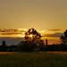 Crookham Sunset