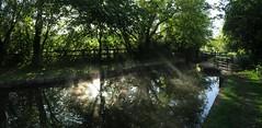 Volumetric morning (simon edge) Tags: mist water reflection sunlight lightbeams chesterfieldcanal shireoaks stitched msice