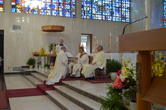 Deacon Petrone receives Book of the Gospels