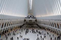 Oculus, WTC, NY (bhermann.hamburg) Tags: groundzero oculus worldtradecenter wtc newyork metro station ubahn bahnhof architecture architektur bogen curves
