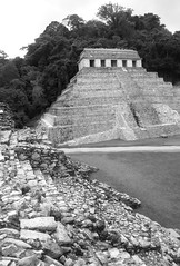 Lakamha's Temple Of The Inscriptions (peterkelly) Tags: digital canon 6d northamerica mexico gadventures mayandiscovery chiapas palenquenationalpark palenque lakamha templeoftheinscriptions mayan maya ruins pyramid temple stone steps stairs bw