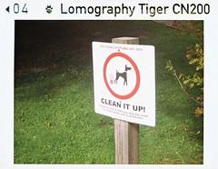 Clean up (bigalid) Tags: halina supermini 110 plastic fixedfocus lomographytiger200cn may 2019 sign