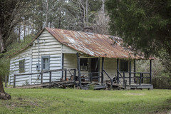 03.20.19 - House near Pimlico (itsbrandoyo) Tags: abandoned bluffplantation berkeleycounty spring lowcountry southcarolina sc springtime historic history liveoaktrees liveoak oaks plantation cottage lewisfield barn farm rurallife rural country southern jedburg