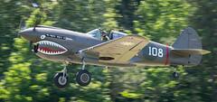 Curtiss P-40 Warhawk (NeilCastle) Tags: warbirds warbirdsoverthebeach airshow p40warhawk curtissp40warhawk virginia warhawk virginiabeach