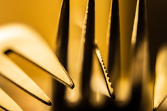 Cutlery (christos.tsiapalis) Tags: 365 project macro macrounlimited fork knife