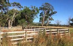 Cobden - Port Campbell Road, Cowleys Creek VIC