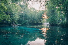 Ginnie Spring (J. Parker Natural Florida Photographer) Tags: fortwhite gilchristcounty ginniespring ginniesprings highsprings santaferiver aquifer forest outdoors spring summer water woods camping polarizer outdoor landscape scenic nature naturalbeauty vsco vscofilm color colorful