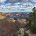 Grand Canyon National Park 20190320a
