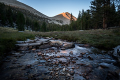 Icing on cake (ScorpioOnSUP) Tags: a7iii bealpha crabtree easternsierra jmt jmt2018 johnmuirtrail sequoianationalpark sierranevada sonyalpha adventure backcountry campground forest lake landscape landscapephotography mountains nature outdoors rocks stream sunset sunsetglow thruhike wilderness