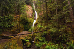 Sprung a Leak (gwendolyn.allsop) Tags: waterfall cascading water holeinthewall columbia gorge oregon pnw forest starvation creek