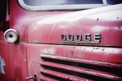 """Dodge"" (Eric Flexyourhead) Tags: old usa truck vintage washington dumptruck faded american dodge edison skagitcounty red detail zeiss emblem bokeh badge worn weathered patina fragment shallowdepthoffield dented 55mmf18 sonyalphaa7 zeisssonnartfe55mmf18za vintagedump"
