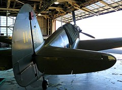 "Curtiss P-40 Warhawk 00001 • <a style=""font-size:0.8em;"" href=""http://www.flickr.com/photos/81723459@N04/47963041477/"" target=""_blank"">View on Flickr</a>"