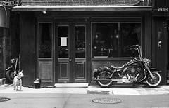 img704 (Jurgen Estanislao) Tags: leica iiig leitz elmar 50mm f28 kodak 400tx hc110 g jurgen estanislao street film analog black white monochrome vintage camera photography taiwan