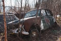 Renault 4 (mariburg) Tags: marode alt old sonyalpha7ii sonyfe2470mmf4zaoss auto car renault