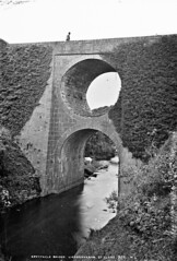 What a spectacle?  A spectacle bridge. (National Library of Ireland on The Commons) Tags: robertfrench williamlawrence lawrencecollection lawrencephotographicstudio thelawrencephotographcollection glassnegative nationallibraryofireland spectaclebridge lisdoonvarna coclare river n67 countyclare spectaclebridgelisdoonvarna riveraille aille johnhill explore rooska