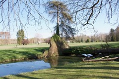 Falling tree in the parc (Val in Sydney) Tags: richelieu france indreetloire