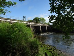 Rail bridge over The Dart (Phil Gayton) Tags: water undergrowth tree sky cloud architecture structure bridge rail railway railroad river dart totnes devon uk ripple