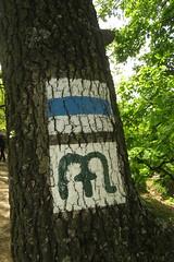 Hiking sign (aniko e) Tags: kőtenger hungary hiking sign bfnp bala balatonfelvidékinemzetipark balatonuplandsnationalpark forest