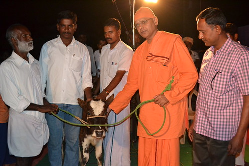 Cattle Distribution (2)