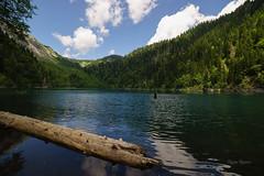 М.Рица (Tatyana Yuganova) Tags: абхазия малая рица озеро лес лето